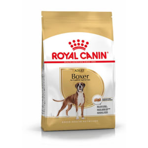 Royal Canin Boxer Adulte 26