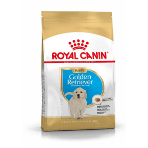 Ideal Title (Do Not touch) Royal Canin Golden Retriever  Chiot Nourriture Croquettes