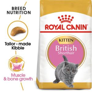 Royal Canin British Shorthair Kitten Dry Food