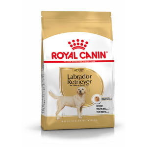 Royal Canin Labrador Retriever Dry Adult Dog Food