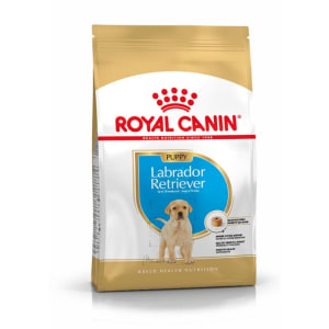 Royal Canin Labrador Retriever Large Puppy Dry Dog Food