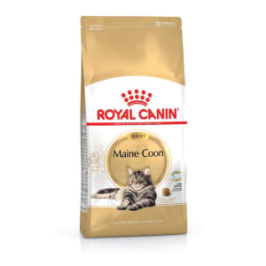 Royal Canin Maine Coon Adult Dry Cat Food