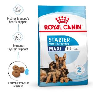 Royal Canin Maxi Starter Mother & Babydog Adult & Puppy Dog Food