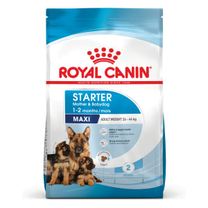 Royal Canin Maxi Starter Mother & Babydog Puppy Dry Food