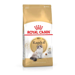 Royal Canin Ragdoll Adult Cat Dry Food