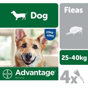 Advantage 400 for Dogs 25kg plus