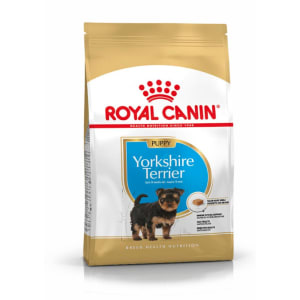 Royal Canin Yorkshire Terrier Hunde Puppy Trockenfutter