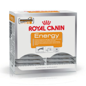 Royal Canin Friandises Energy