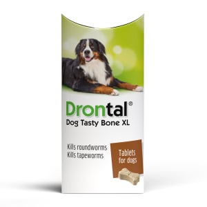 Drontal Plus XL Beef Flavour Dog Worming Tablet