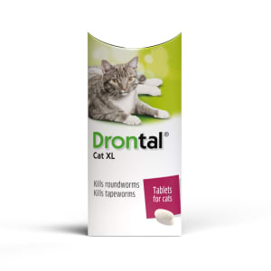 Drontal XL Worming Tablet for Cats