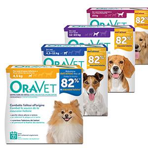 Bâtonnets à mâcher pour chien Oravet
