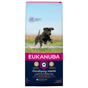 Eukanuba Developing Junior Large Breed Food