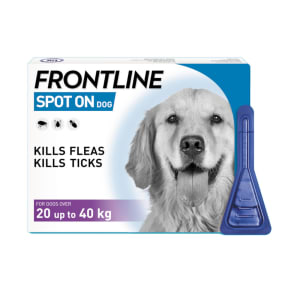 Frontline Spot On Flea & Tick Treatment Large Dog (20-40kg)