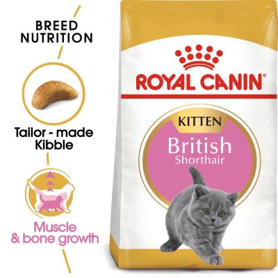 Royal Canin British Shorthair Kitten Dry Food - 400g