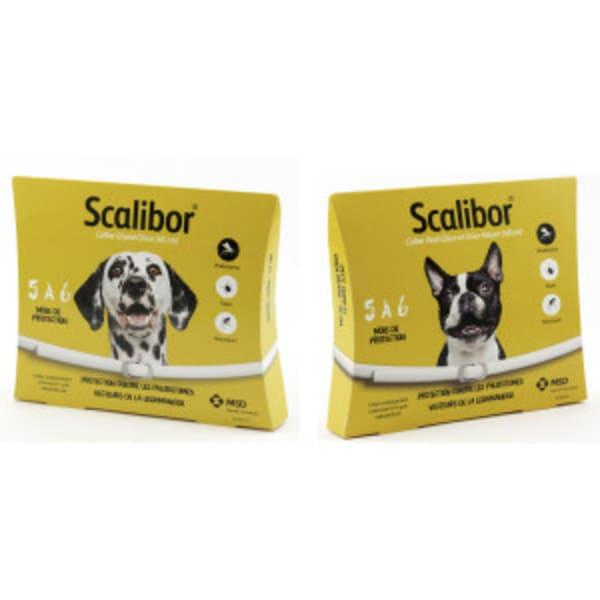 Collier Scalibor pour Chiens