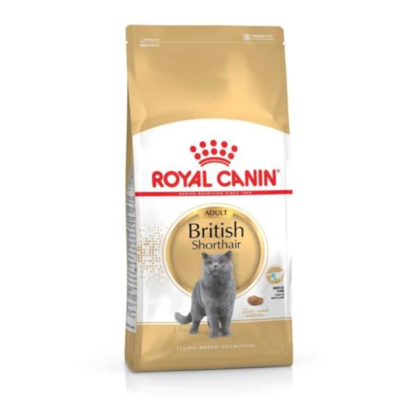 Royal Canin British Shorthair Katzenfutter für Britisch Kurzhaar