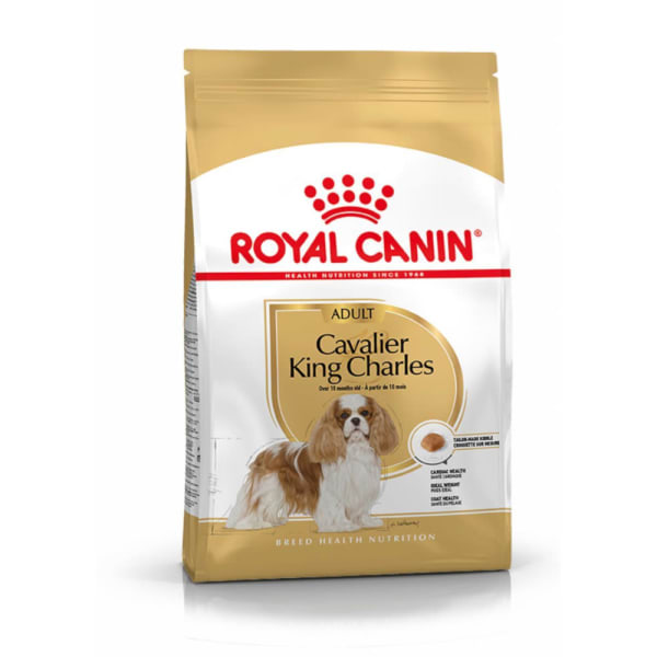 Royal Canin Cavalier King Charles Chien Adulte Nourriture Croquettes