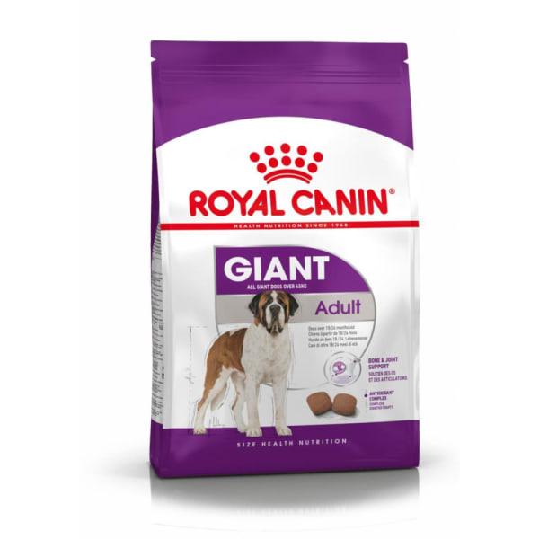 Royal Canin Giant Chien Adulte Nourriture Croquettes
