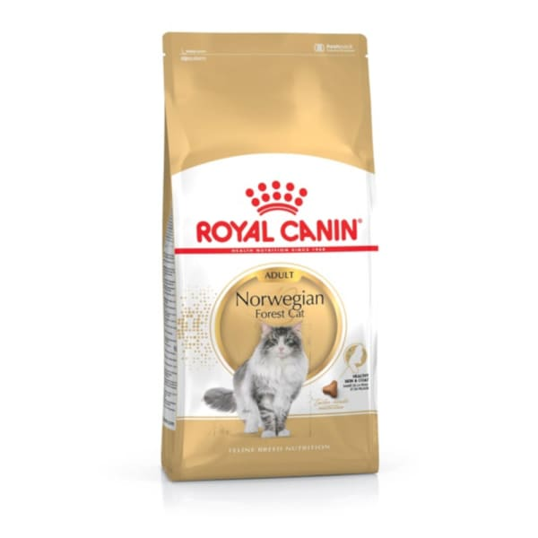 Royal Canin Feline Breed Health Norwegian Forest