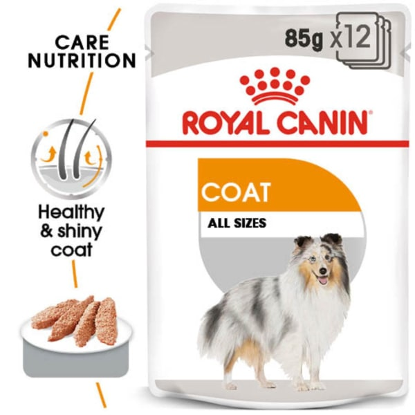 Royal Canin Coat Care Adult Wet Dog Food