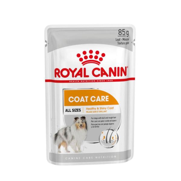 Royal Canin Coat Care Wet Adult Dog Food