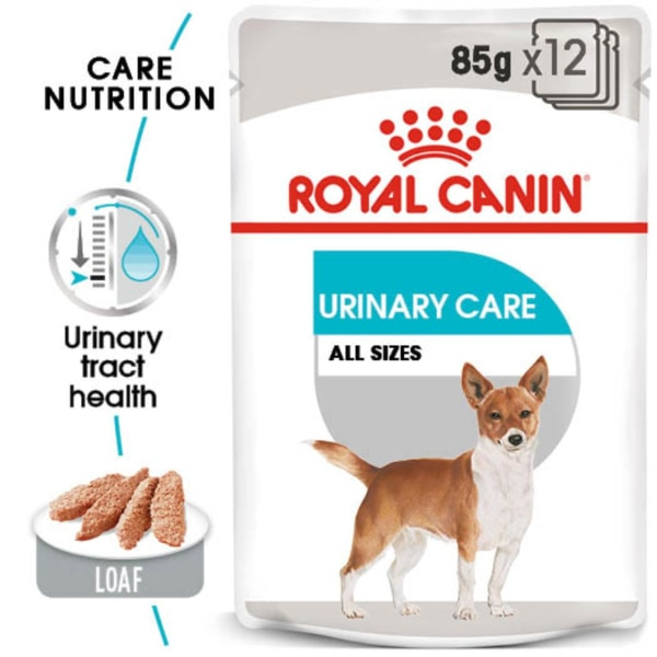 Royal Canin Urinary S/O Adult Wet Dog Food Can