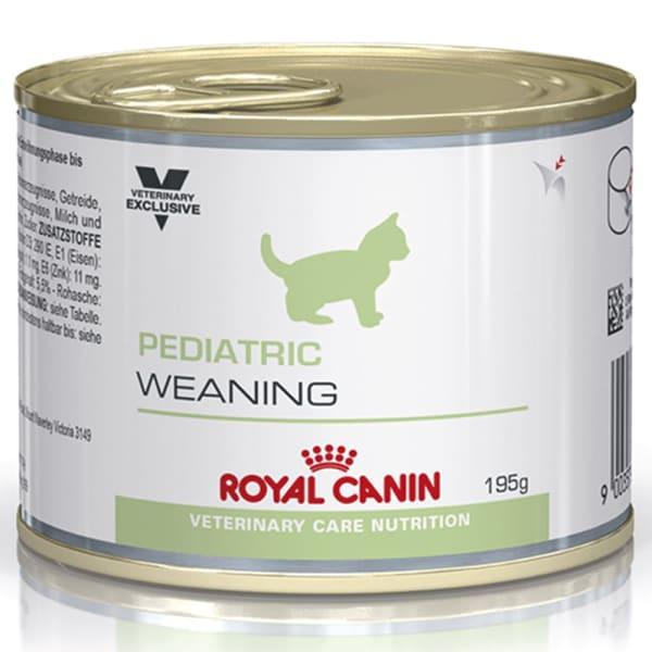 Royal Canin – Pediatric Weaning für Katzenwelpen (Nassfutter)