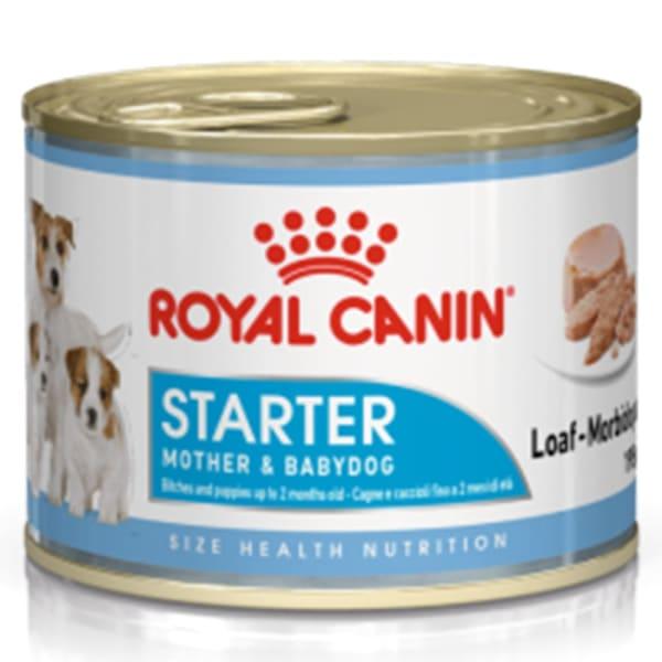 Royal Canin Starter Mousse Mother & Babydog Wet Dog Food