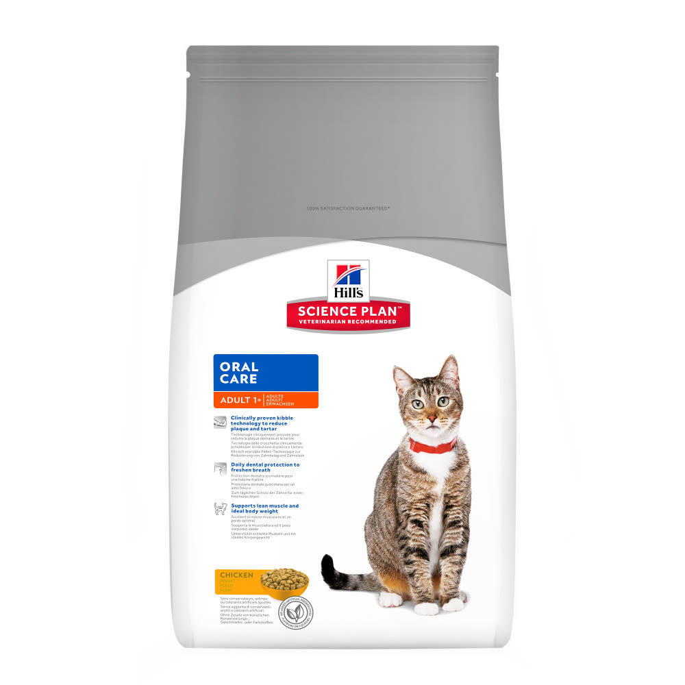 cat food strategy 2014-9-22 to get free cat food,  cat energy quick restore the battle cats comes with a stamina system which dictates how much you.