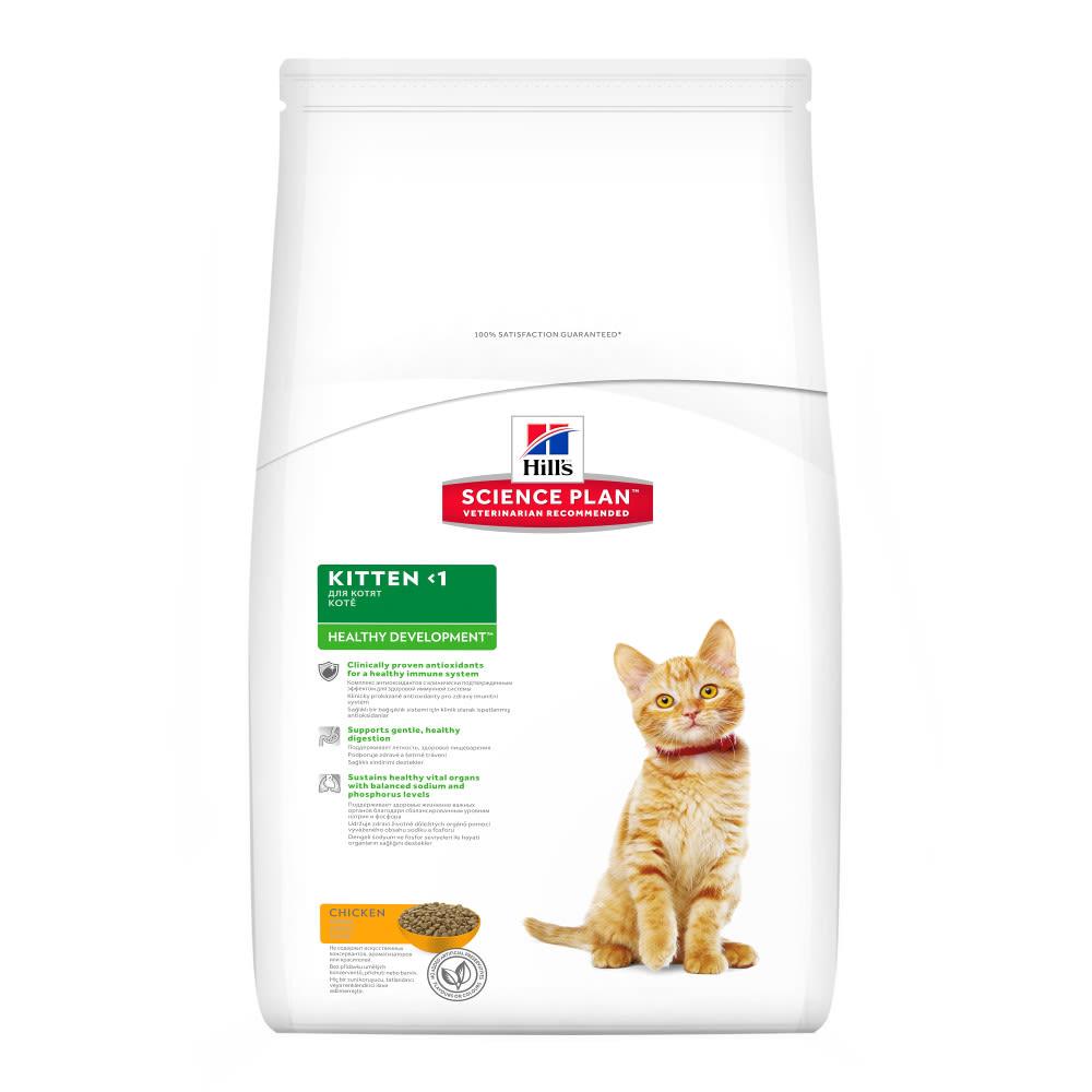 Kitten | Food, Care & Toys For Kittens | MedicAnimal com