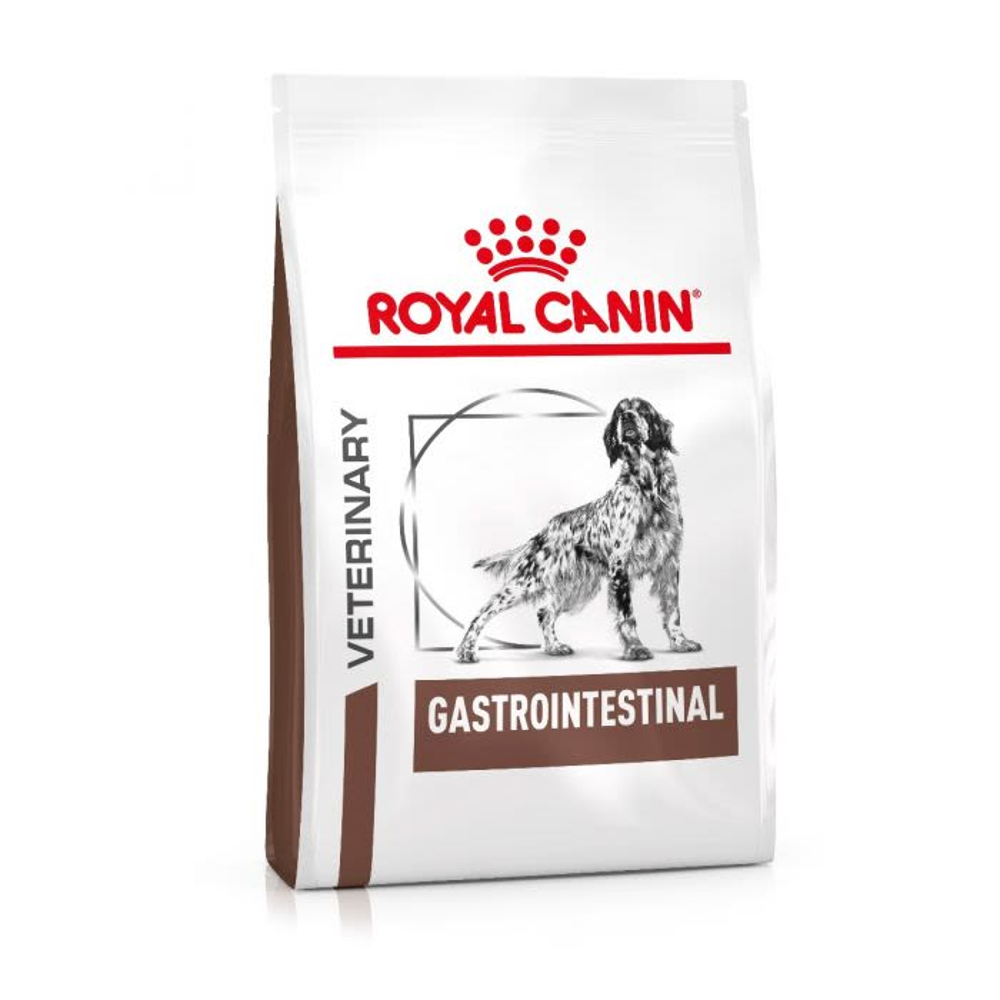 Royal Canin Vet Diet – Gastro Intestinal für Hunde