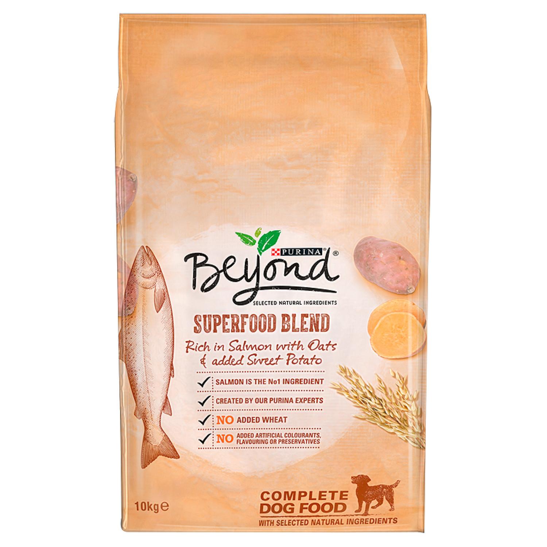 Beyond Can Dog Food Ingredients