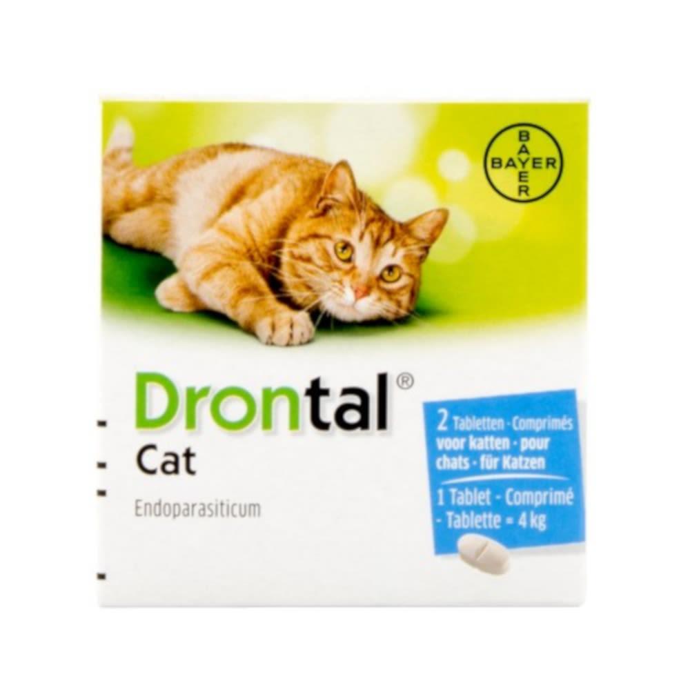 Drontal pour chats - Comprimé vermifuge