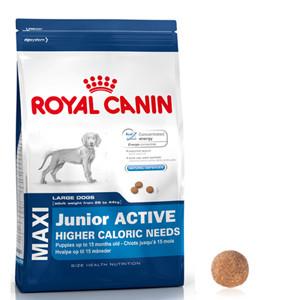 royal canin maxi junior active. Black Bedroom Furniture Sets. Home Design Ideas