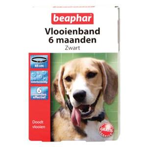 allergie bij honden behandeling