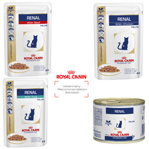 royal canin veterinary diet feline renal. Black Bedroom Furniture Sets. Home Design Ideas